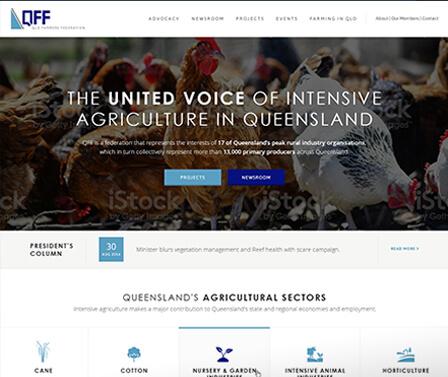 QFF homepage design concept