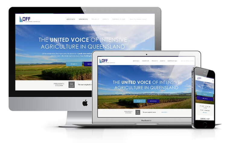QFF website design concept