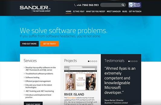 Sandler homepage design concept